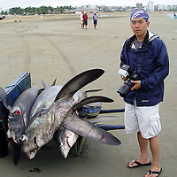 Eric Cheng in Manta, Ecuador, photographing shark fishing