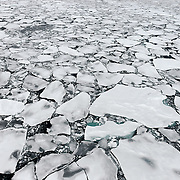 Arctic Ocean sea ice in September, 2012.