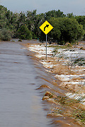 WIGGINS, CO - SEPTEMBER 14: Flood waters from the South Platte River wash over Morgan County Road 1 near Wiggins, Colorado as heavy rains for the better part of week fueled widespread flooding in numerous Colorado towns on September 14, 2013. (Photo by Marc Piscotty/ © 2013)