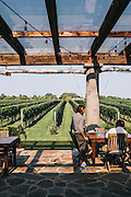 The Wolffer Estate winery, Sagaponack, East Hampton, NY