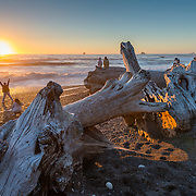 Watching and celebrating the sunset on Rialto Beach, Olympic National Park, on an unusually warm October 3rd. Giant driftwood logs—entire trees—litter the beach, washed up by surf that can reach 20-plus feet in winter.