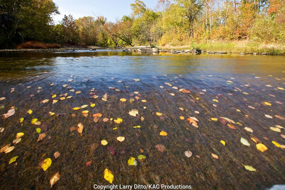 autumn on the Buffalo National River, Ozark Mountains, Arkansas