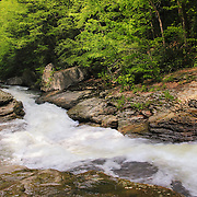 &quot;Runneth Over&quot;<br /> <br /> Beautiful rapidly flowing water of Meadow Run in Ohiopyle State Park.