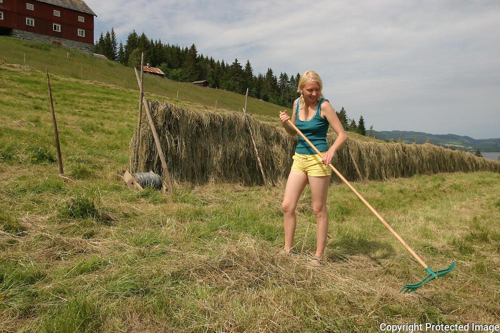 Marthe Vall (23) musiker som fikk spelemannspris som Årets debutant 2005 for debutplata si. Konserter på svært mange festivaler sommeren 2006, men er hjemmom å hjelper mor i Selbu med hersjingen slik at villsauen og geitene får mat til vinteren. Så smått i gang med å skrive låter til neste plate. B.a. vært på festspillene i Harstad (hvor hun er oppvokst, Sommerfestivalen i Selbu (17.000 billetter) og skal til Storås i Meldal sist i juli, og mange, mange fler.