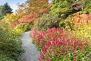 October in Holehird Gardens