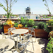 Common rooftop terrace in Greenpoint. Roof terrace design and built by Outside Space NYC It features seasonal layered planting and outdoor kitchen, custom built Ipe planters and custom built Ipe benches. Selection of mostly native plants inspired by the colors of New York.