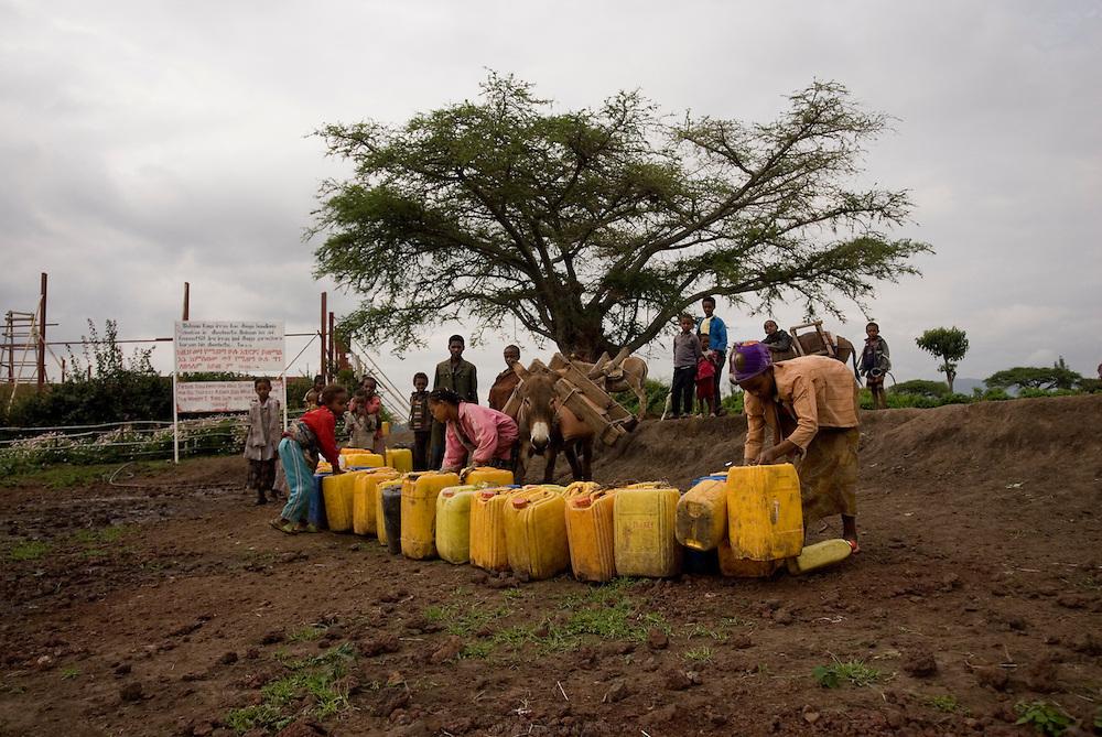 """En Éthiopie depuis 20 ans, l'agriculteur hollandais Gert Van Putten installé à une heure au sud d'Addis Abeba, emploie près de 600 éthiopiens. Ses activités principales sont l'élevage de bétail et de poules, la production d'œufs, d'aubergines, de salades, d'oignons, d'alfalfa etc. L'eau qu'il utilise provient du Lac Ziway et de puits creusés sur ses terres. Celui de la ferme Maranatha est en accès libre. Tous les jours jusqu'à 17h, les enfants font la queue avec leur bidon sous un panneau où l'on peut lire en anglais et en Amharic """"Jesus said everyone who drinks this water will be thirsty again but who ever drinks the water I give him will never thirst indeed. John 4.13-14"""". Éthiopie août 2011."""