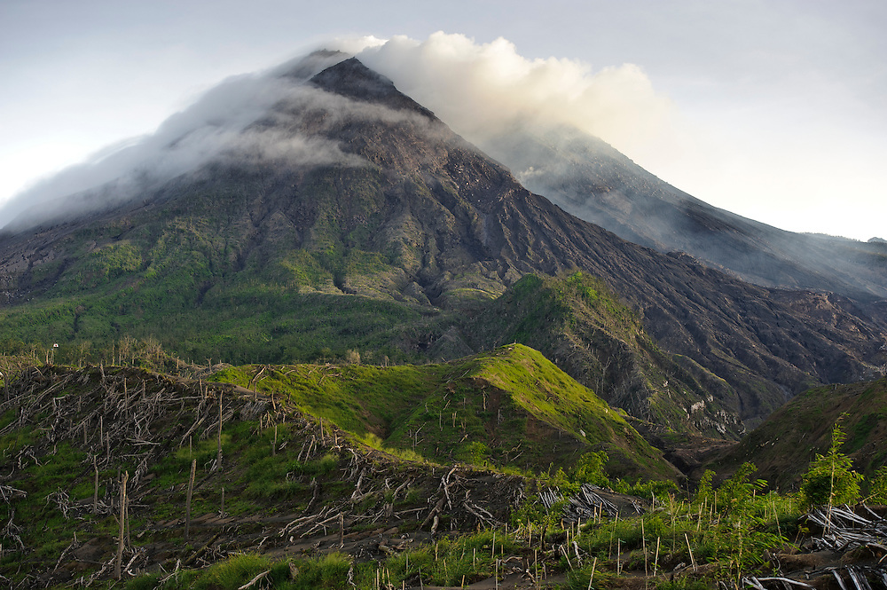Gunung Merapi from Kinahrejo, Java, Indonesia.  The stakes are where small shrubs have been planted to stabilise the soil.