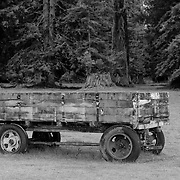 Old Wooden Wagon -  Hwy 101 - North Crescent City - Northern CA - Infrared Black & White