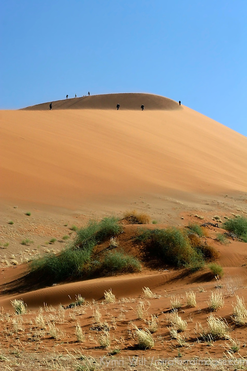 Africa, Namibia, Sossusvlei. Hikers on distant dune appear as ants in Sossusvlei.
