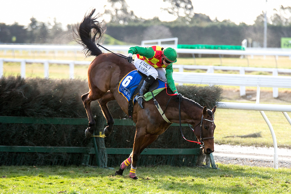 Jockey Emily Farr riding Faites Vos Jeux holds on to clear the last hurdle during race 7 141st NZ Grand National Steeplechase at Riccarton Park, Christchuch, New Zealand, Saturday, August 08, 2015. Credit:SNPA / Martin Hunter