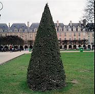 Paris Hasselblad