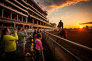 May 01, 2014: Fans take pictures of Derby favorite California Chrome as he prepares for the Kentucky Derby at Churchill Downs in Louisville Ky. Alex Evers/ESW/CSM