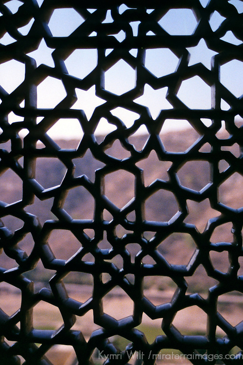 Asia, India, Amer. Amber Palace lattice window.