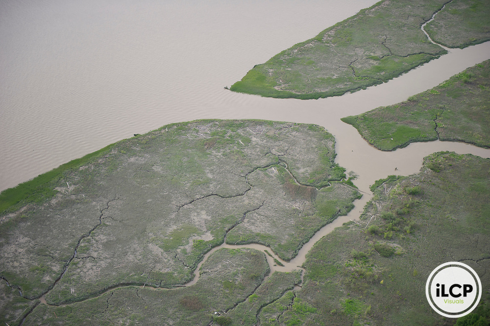 Mud flats near the mouth of the Fraser River.