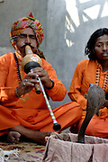 Sheesha Nath plays his snake charming pipe known as a Bean whilst his assistant strums a simple instrument in the Indian state of Uttar Pradesh on 4th Dec 2006..56 yr old Sheesha comes from a family of charmers that have been in the business for as long as anyone can remember. .He says of charming, 'the future does not look good for charmers, its just not sustainable these days. The situation has become so bad that charmers cannot even afford to send their children to school'...