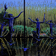 Brookgreen Gardens, in Murrells Inlet, South Carolina, is a sculpture garden and wildlife preserve which includes several themed gardens with American figurative sculptures and trails of nature reserves on the 9,100 acre property.  It was founded by Archer Milton Huntington and his wife Anna Hyatt Huntington to feature sculptures by Anna and her sister Harriet Hyatt along with other American Sculptors.   I was built on a former rice plantation - Brookgreen Plantation.  During the Christmas season many of the sculptures and live oak trees are dressed in brilliant lights.  It is one of the most popular attractions in South Carolina.