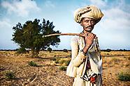 Rabari - Nomadic cattle herders