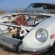 80's White Nissan Z - Pearsonville, CA - Lensbaby