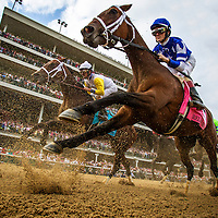 May 01, 2014: Aurellias Belle with Channing Hill up races in the Kentucky Oaks at Churchill Downs in Louisville Ky. Alex Evers/ESW/CSM