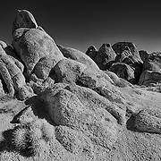 Heart Arch And Cactus - Alabama Hills CA - HDR - Infrared Black & White