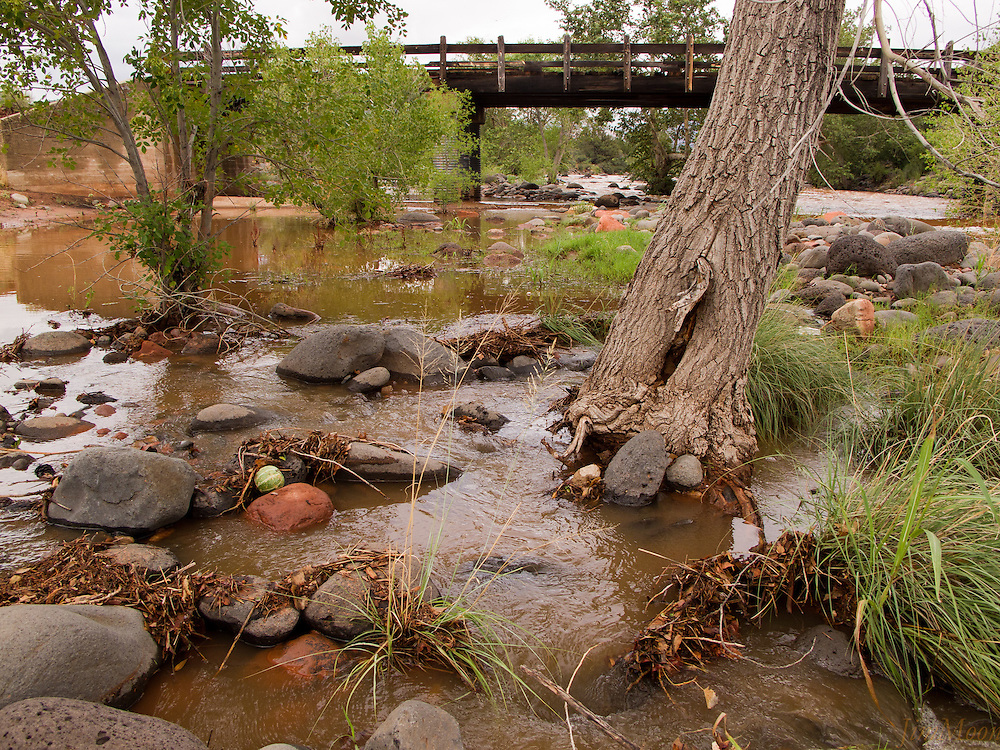 Dry Creek River bed, Lost Picnic