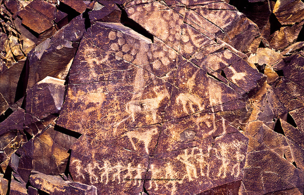 "This panel, called ""Pantheon of Sun Gods"" by archeologists, is one of more than 2,000 Petroglyphs at Tamghali created between the Bronze Age and the Renaissance.  Petroglyphson five large rock faces can be viewed as one from a nearby ceremonial site as the setting sun illuminates them.  This detail describes the Kazakh faith called Tengri.  The one horizontal person on the bottom left represents, Mother Earth from whom all life issues.  The line of dancing figures represents tyhe physical dimension of our lives on earth.  The sun god figures represent the dimension of the Great Spirit and our ancestors.  These three levels of existence are not separate, but exist concurrently and in unity.  Tamghali is on an ancient north-south route in the Chu-ili mountains of southeastern Kazakhstan."