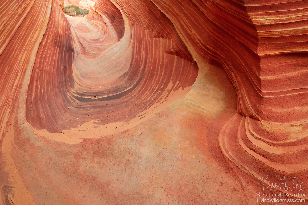 A very narrow canyon leads through a petrified sand dune, known as the Wave, in the Coyote Buttes Wilderness in northern Arizona.