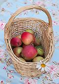 Fruit and berries - Frukt og bær