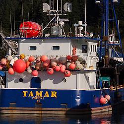 Tamar, Cordova, Alaska, US