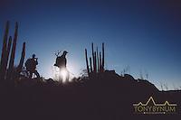 mule deer hunting, sonora mexico