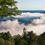 Thick morning fog begins to lift over the Allegheny River and Courson Island in this view from the Tidioute Overlook in the Allegheny National Forest, Pennsylvania. Radiation fog is common in river valleys, especially in the late summer and autumn, when cold air sinks into moist air.