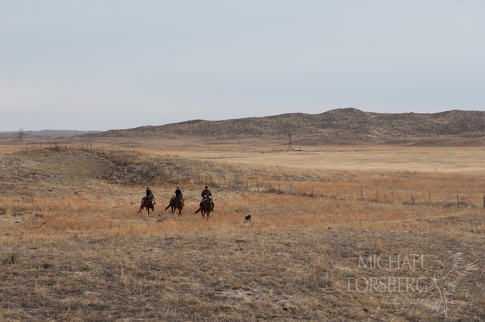 TNC HORSE CREEK FEN RANCH<br /> CHERRY COUNTY<br /> SANDHILLS<br /> <br /> Shane Daniels and daughters Rebekah and Mikayla(center) ride across pasture after checking cattle.