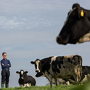 UL Dairy Research