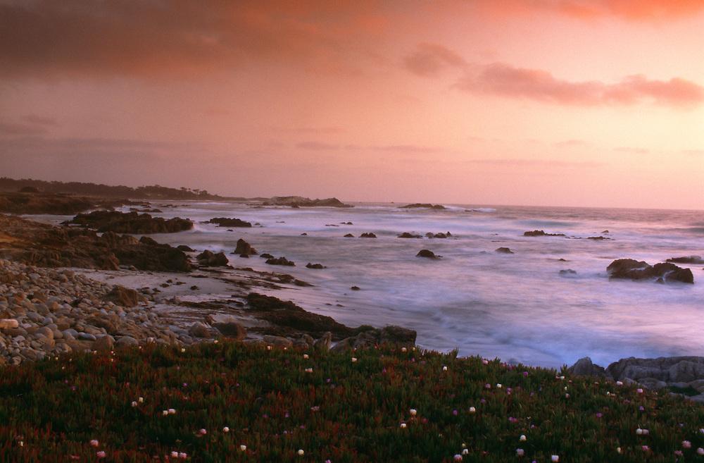 USA, California, Alisomar State Beach at sunset