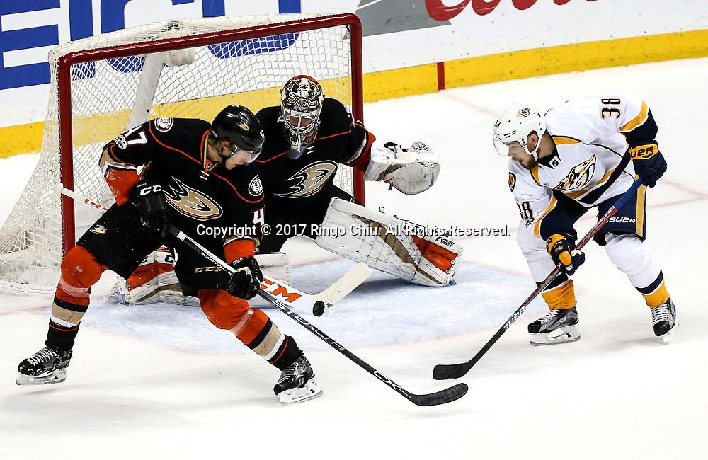 5月12日,阿纳海姆鸭队球员Hampus Lindholm (左) 在门前救险。当日,在美国加利福尼亚州的阿纳海姆举行的2016-2017赛季國家冰球聯盟(NHL)季后赛西部决赛,阿纳海姆鸭队 (Anaheim Ducks) 主场以3比2不敌纳什维尔捕食者队(Nashville Predators)。新华社发 (赵汉荣摄)