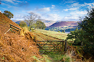 A gate leads to a field that leads down to distant Ullswater, Cumbria - photographed in October.