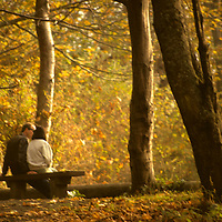 North America, USA, Washington. A couple enjoying the romance of fall colors of the Pacific Northwest.