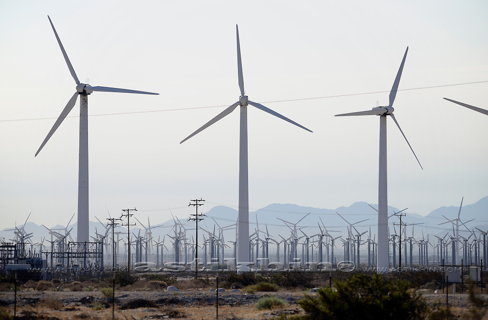 Wind Turbine Farm in California.