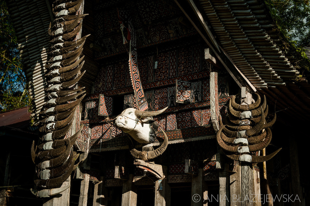 Indonesia, Sulawesi, Tana Toraja. Ke'te Kesu - traditional village.<br /> <br /> Tana Toraja, situated in the south of Sulawesi, sometimes reminds alive museum full of traditional boat-shaped houses painted with Torajan patterns, burial caves or hanging graves guarded by tau tau (a deceased shaped wooden sculptures(, all of them situated in a beautiful scenery of green rice terraces.