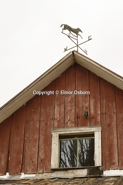 horse weathervane on red barn, vertical sheathing