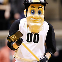 WEST LAFAYETTE, IN - DECEMBER 29: Purdue Boilermakers mascot Purdue Pete seen on the court during a timeout against the William & Mary Tribe at Mackey Arena on December 29, 2012 in West Lafayette, Indiana. Purdue defeated William & Mary 73-66. (Photo by Michael Hickey/Getty Images)