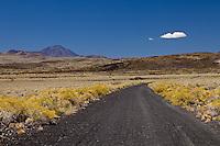 CAMINO Y VOLCAN PAYUN LISO (3.833 m.s.n.m.), RESERVA PROVINCIAL LA PAYUNIA (PAYUN, PAYEN), MALARGUE, PROVINCIA DE MENDOZA, ARGENTINA (PHOTO © MARCO GUOLI - ALL RIGHTS RESERVED)