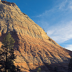 On the eastern edge of Zion National Park, the Honeycomb Hills glow in the late evening sun.