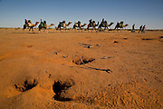 Camel Trek just outside William Creek in North Eastern South Australia. Explore the Outback camel safaris are based in the central Australian deserts near William Creek along the Oodnadatta Track (Lake Eyre, South Australia), and operate from April through to October every year.
