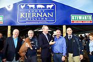 Buddy Kiernan Milling  at the National Ploughing Championships 2015