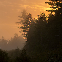 Morning fog in the Reed Plantation in Reed, Maine.