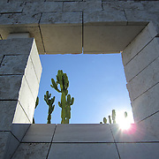 Cactus Garden as seen through an architectural window at the Getty Center in Los Angeles, California. Diffusing the sun rays!