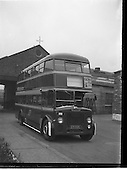 1959 - New Leyland buses for CIE at Broadstone Depot