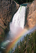 """Spray from Yellowstone Falls refracts a rainbow in the """"Grand Canyon of the Yellowstone,"""" Yellowstone National Park, Wyoming, USA. Yellowstone was the first national park in the world (1872), and UNESCO honored it as a World Heritage site in 1978."""